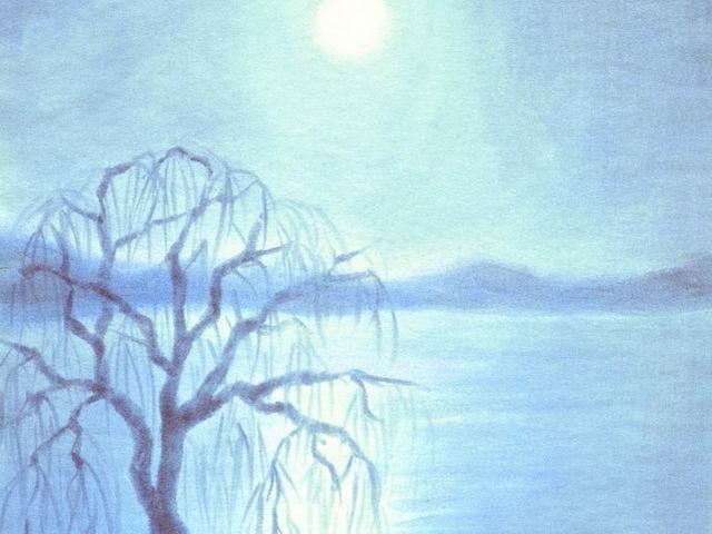 004: Mondnacht, Trauerweide am See