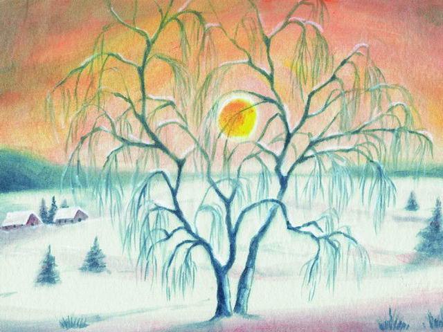 024: Trauerweide Winter