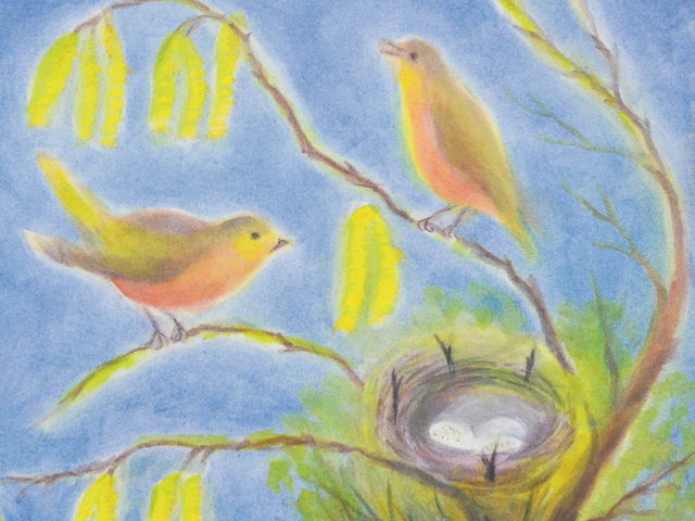 143: Nistendes Vogelpaar