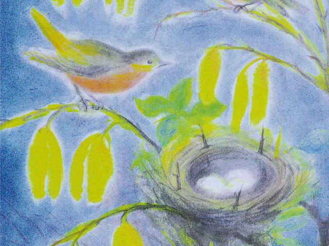 167: Nistendes Vogelpaar