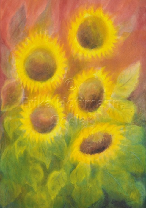166_Sonnenblumen