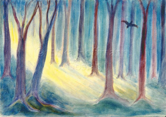 185_Sonnenlicht im Wald