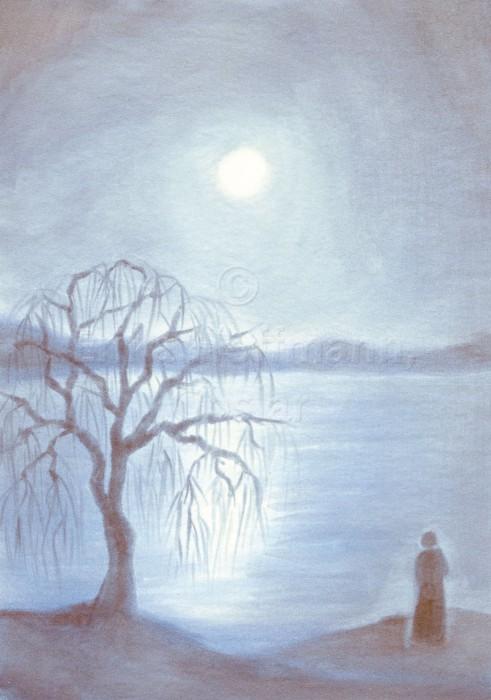 004_Mondnacht, Trauerweide am See