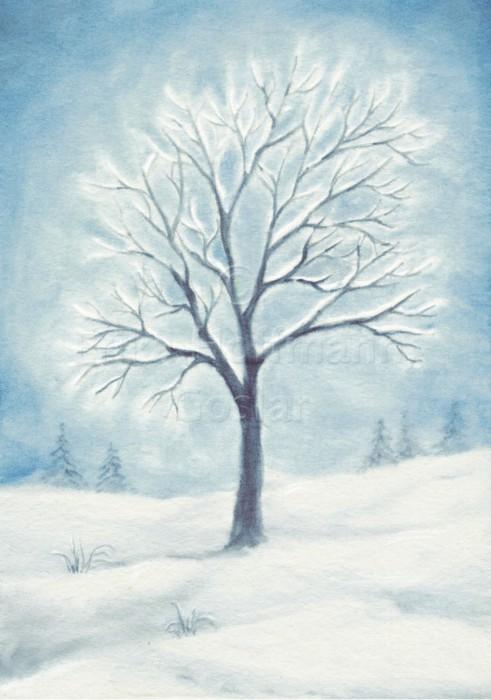 033_Winterbaum im Schnee