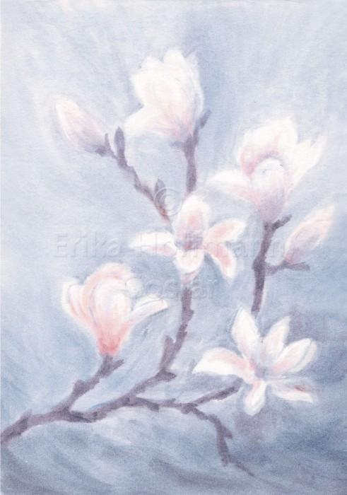 055_Magnolie, rosa-grau