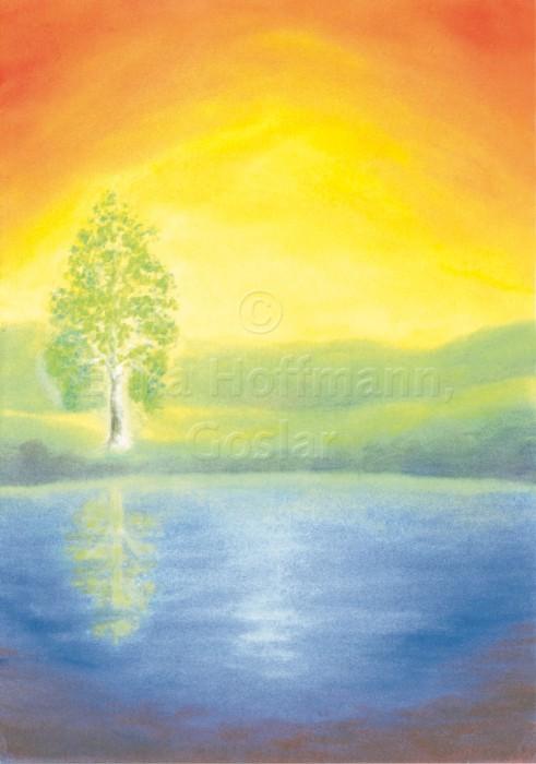 098_Landschaft, Birke, Regenbogenfarben