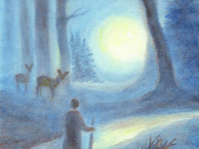 005: Wanderer im Winterwald