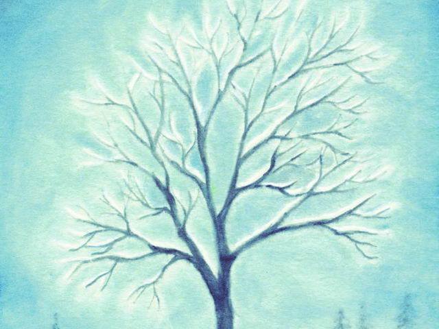 033: Winterbaum im Schnee