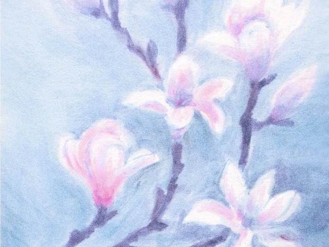 055: Magnolie, rosa-grau