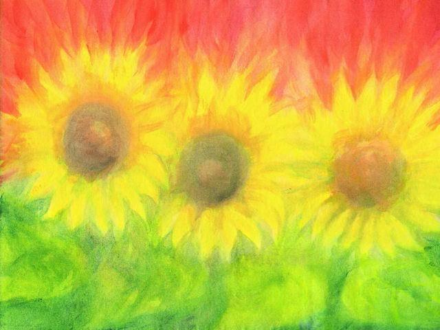 078: Drei Sonnenblumen
