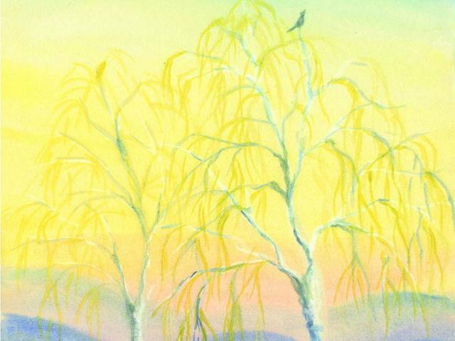 081: Birken im Vorfrühling
