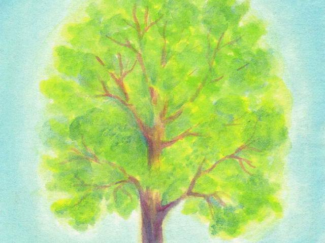 084: Sommerbaum
