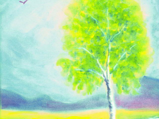 086: Birke im Frühling