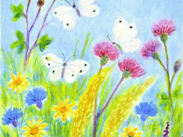 103: Wiese, Schmetterlinge
