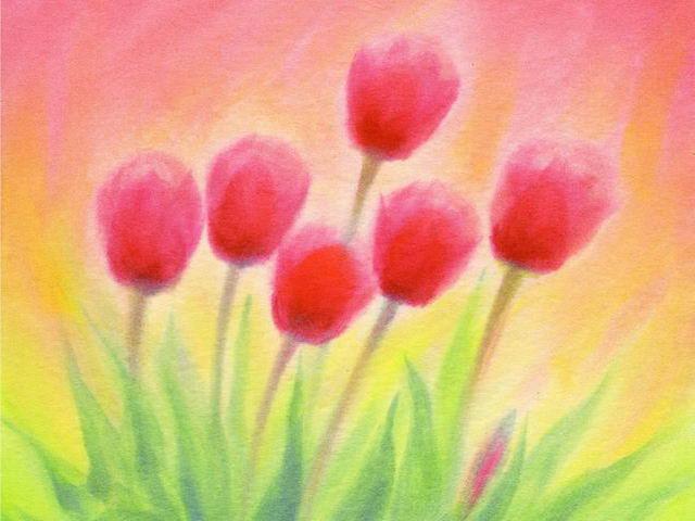 109: Tulpen