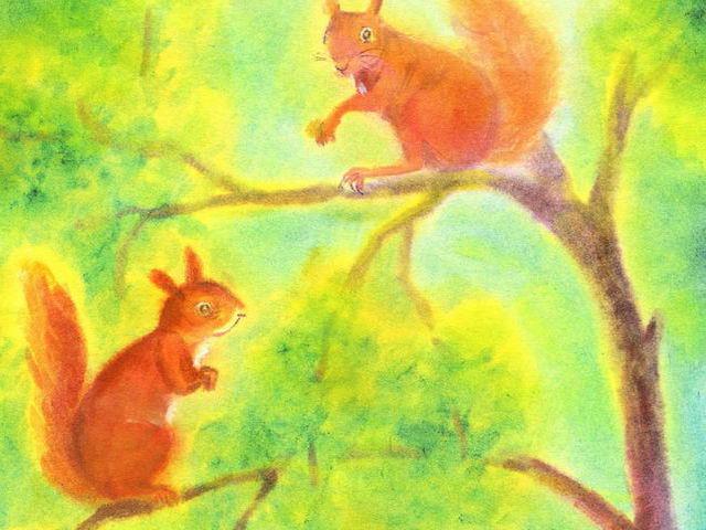 127: Eichhörnchen