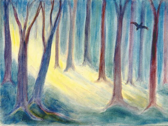 185: Sonnenlicht im Wald