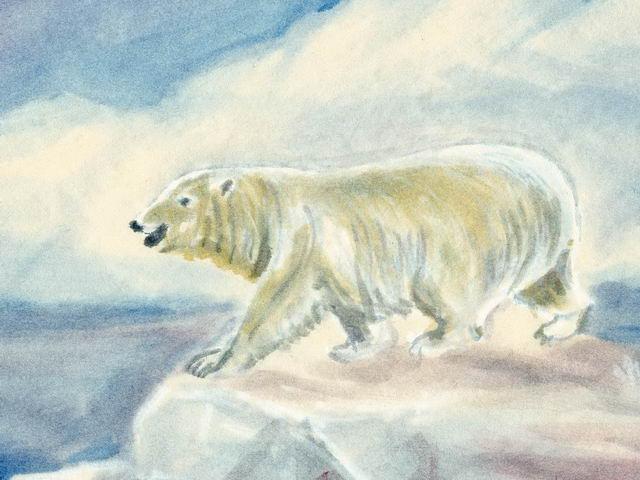 192: Eisbär