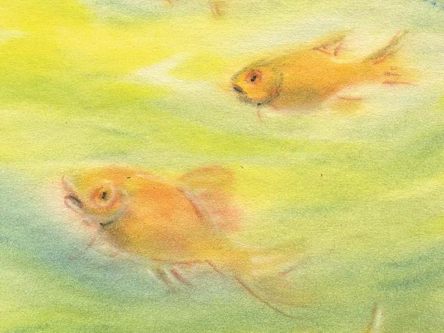 194: Fische