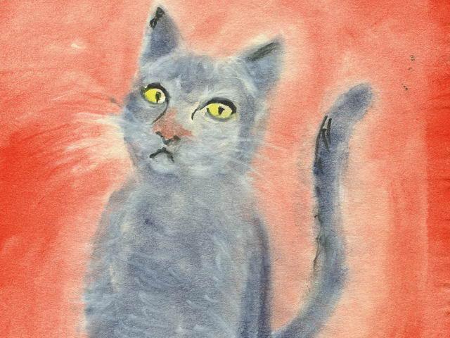 198: Katze