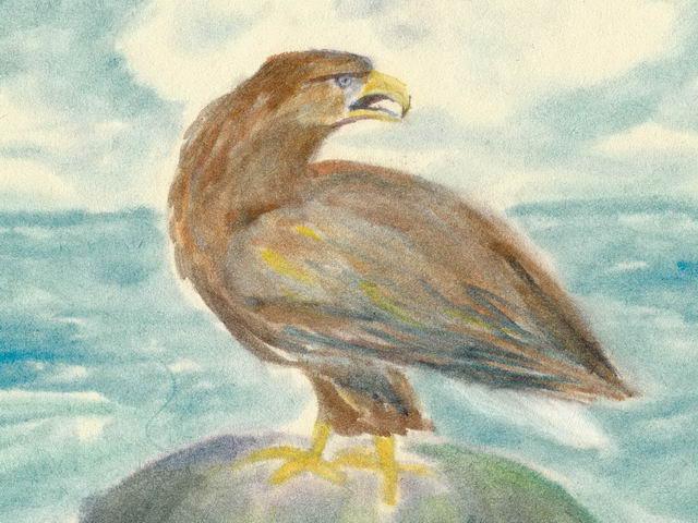 201: Seeadler
