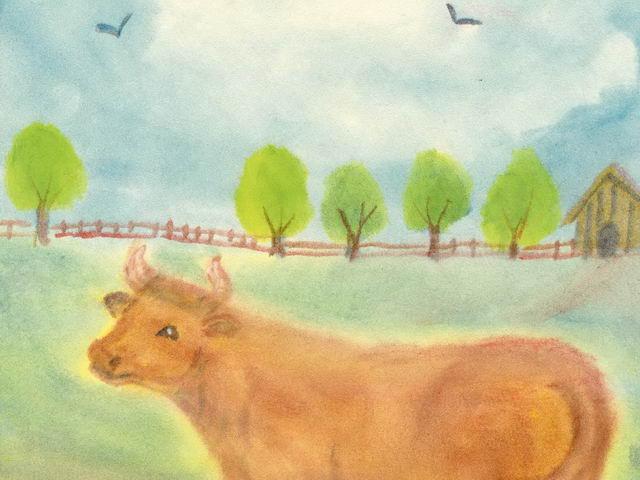 205: Kuh auf Weide